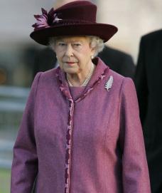 Royal fern brooch