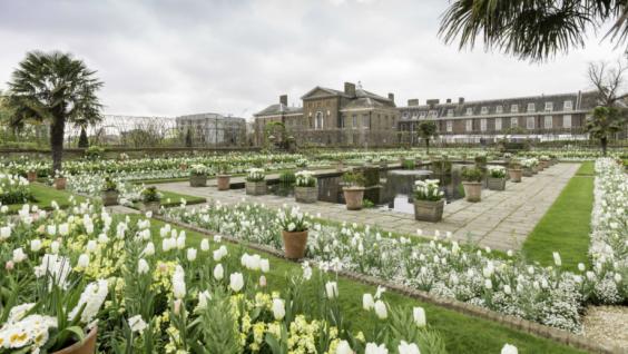 white-garden-diana-kensington