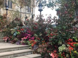 Haie florale à l'entrée de la chapelle